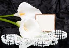 weiße Callas mit Fahne fügen hinzu Lizenzfreie Stockbilder