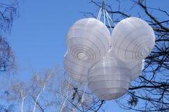 Weiße chinesische Papierlaternen, die an einem Baumast hängen stockfotos