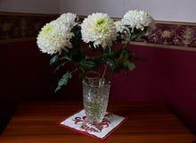 Weiße Chrysanthemen in einem Kristallvase stehen auf einer Tabelle Stockbild
