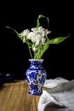 Weiße Chrysanthemenblume im blauen Vasenstillleben auf hölzernem Brett Stockbild