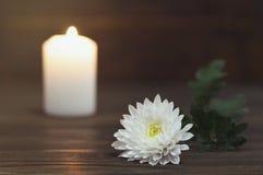 Weiße Chrysanthemenblume und brennende Kerze lizenzfreies stockbild