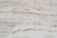 Weiße coquina Wand Hintergrund, Beschaffenheit Lizenzfreie Stockfotos