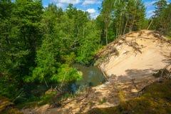 Weiße Düne im Wald lizenzfreie stockfotografie