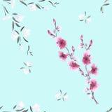Weiße des nahtlosen Musteraquarells kleine und rosa Blumen auf dem hellblauen Hintergrund Lizenzfreie Stockfotos