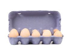 Weiße Eier im Eikasten. Stockfotos