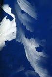 Weiße Eiskristalle   Stockfotografie