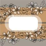 Weiße empfindliche Blumen des schönen Jasmins stock abbildung