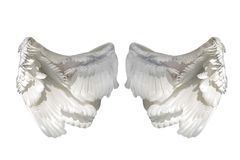 Weiße Engelsflügel Stockfotos