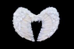 Weiße Engelsflügel Stockbild