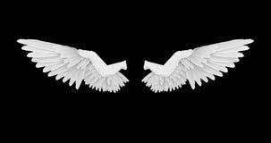 Weiße Engelsflügel mit einem Alphakanal stock video