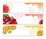 Weiße Fahnen mit exotischen Früchten stock abbildung