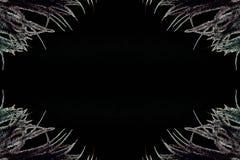 Weiße Federn auf dem schwarzen Hintergrund stockfoto