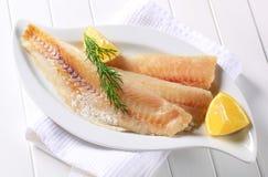 Weiße Fischfilets stockbild