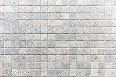 Weiße Fliese wal Stockbilder