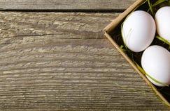 Weiße frische Eier in der Pappschachtel mit Gras Lizenzfreie Stockbilder