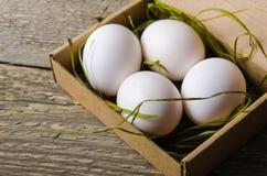 Weiße frische Eier in der Pappschachtel mit Gras Lizenzfreie Stockfotos