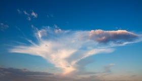 Weiße große Wolke auf einem rosa Sonnenuntergang, Stockbilder