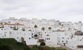 Weiße Häuser mit Palme auf dem Abhang Lizenzfreies Stockbild