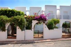 Weiße Häuser mit purpurroten Blumen Stockfoto