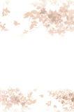 Weiße Hintergrundblumen Lizenzfreie Stockfotos