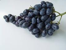 Weiße Hintergrundnahaufnahme der blauen Trauben Stockfotos
