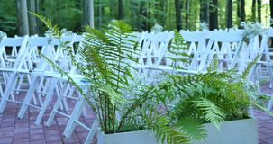 Weiße Hochzeitsstühle mit Blumen Draußen Hochzeitszeremonie Hochzeit gegründet im Garten stock video footage