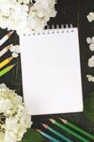Weiße Hortensieblumen und -bleistifte auf einem dunklen Hintergrund Lizenzfreie Stockfotografie