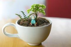 ` Weiße Kaffeetasse mit wenigem Baum und kleiner Puppe lizenzfreies stockfoto