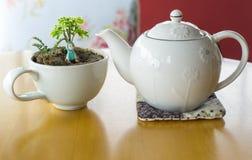` Weiße Kaffeetasse mit wenigem Baum und kleiner Puppe stockbild