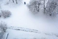 Weiße, kalte Winterlandschaft mit Sträuchen, Bäume mit einer Ansicht von Lizenzfreie Stockbilder