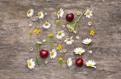 Weiße Kamille und Kirsche Stockfotografie