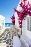 Weiße kleine Gasse und Häuser mit roten bouganvillea Blumen in Paros-Insel stockfotografie