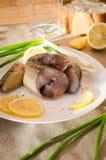 Weiße Kreisplatte der geräucherten Makrele lizenzfreies stockbild