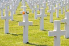 Weiße Kreuze des amerikanischen Kirchhofs und des Denkmals Normandies des Zweiten Weltkrieges Stockbild