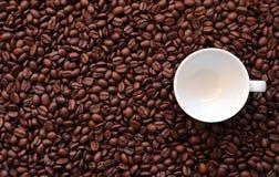Weiße leere Espressoschale auf Kaffeebohnehintergrund für Kopienraum lizenzfreies stockfoto