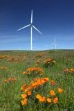 Weiße Leistung, die Wind-Turbinen, Wildflowers festlegt stockfotografie