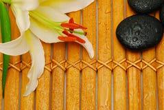 Weiße Lilie auf Bambus Lizenzfreie Stockfotos