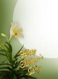 Weiße Lilien des Mutter Tages Stockfoto