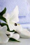 Weiße lillies und blaue Tücher durch das Wasser Lizenzfreie Stockbilder