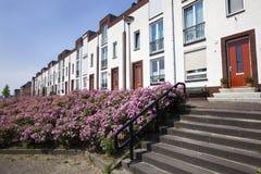 Weiße moderne Häuser in Folge stockfotografie