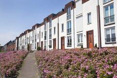 Weiße moderne Häuser in Folge stockbilder