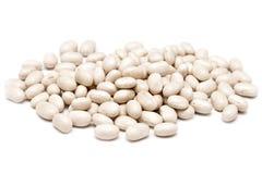 Weiße Nieren-geformte Bohnen Stockfoto