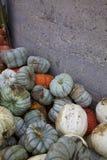 Weiße, orange und Blau-graue Cinderella Pumpkins Wait für ein stürmisches Bad durch Gray Pumpkin Patch Silo Lizenzfreie Stockbilder