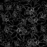 Weiße Orchidee blüht auf nahtlosem Muster des schwarzen Hintergrundes Stockfoto