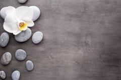 Weiße Orchideen- und Badekurortsteine auf dem grauen Hintergrund Lizenzfreie Stockbilder