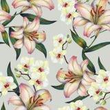 Weiße Orchideenblume auf einer Niederlassung, Lilie, Aquarell, Blumenstrauß, kopieren nahtloses Lizenzfreie Stockbilder