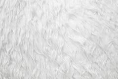 Weiße Pelzbeschaffenheitsnahaufnahme Stockfotografie