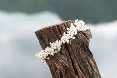 Weiße Perlenkrone Stockfoto