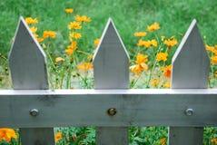 Weiße Pfosten-ZaunWildflowers Stockfotos
