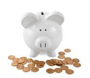 Weiße Piggy Querneigung umgeben mit Pennys Lizenzfreie Stockfotos